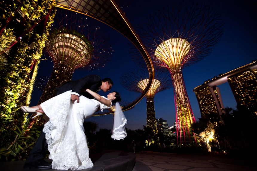 gardens by the bay singapore wedding photo